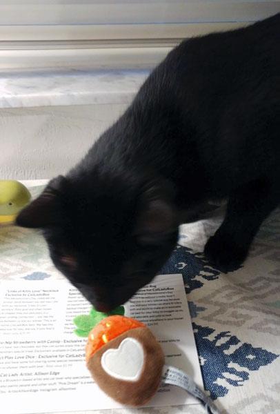 Кошачьи игрушки с наполнителями