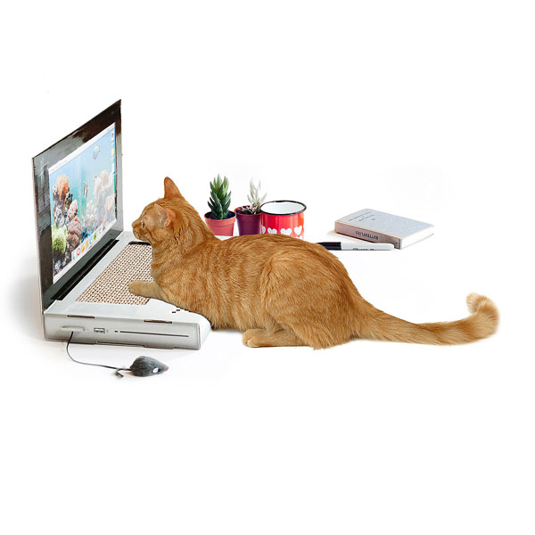 Кошачья подушка для царапанья