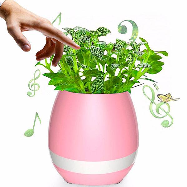 Музыкальный горшок для растений с Bluetooth
