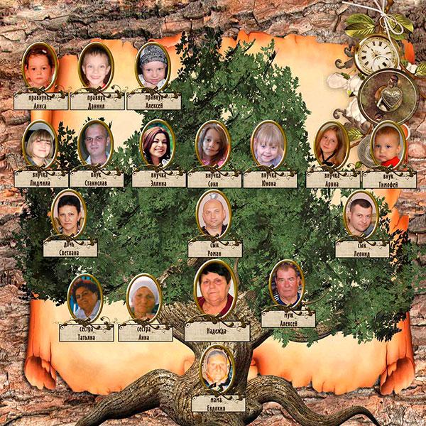 Замечательно оформленное генеалогическое древо со снимками родственников