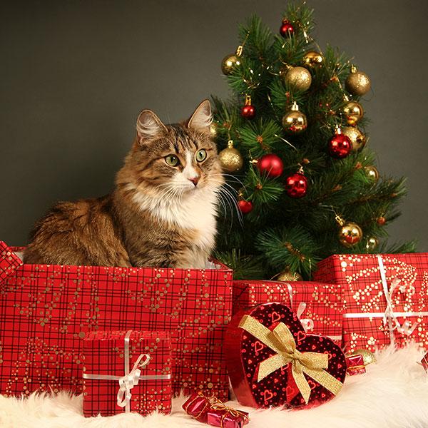Как подобрать подарок