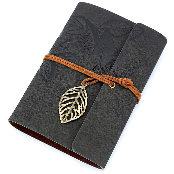 Записная книга-дневник