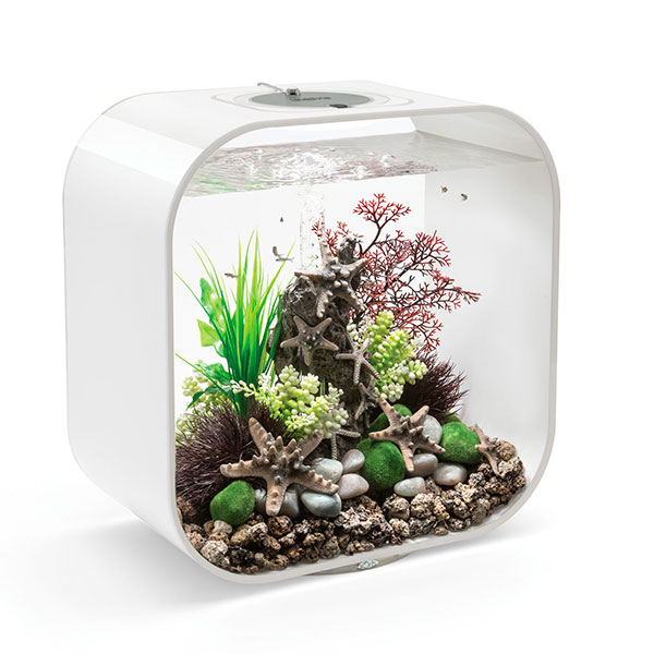 Компактный аквариум