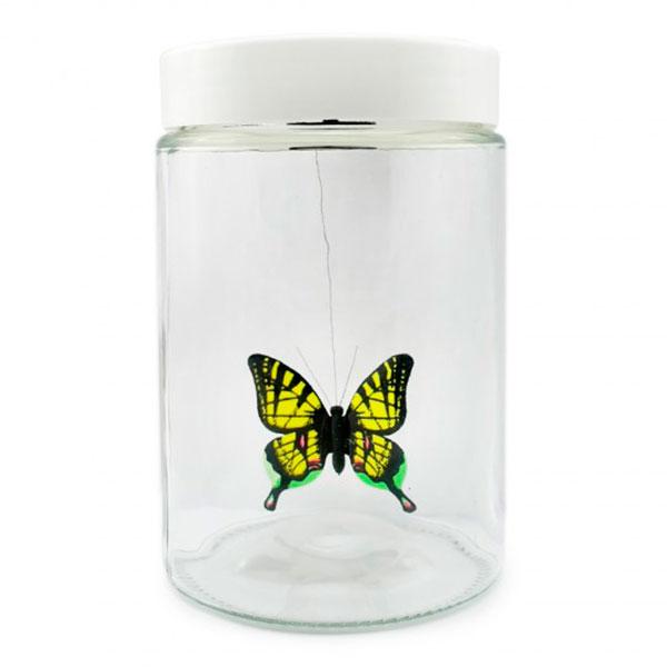 Редкостная бабочка в банке