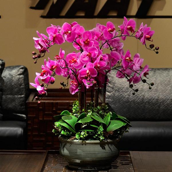 Вазон с орхидеями